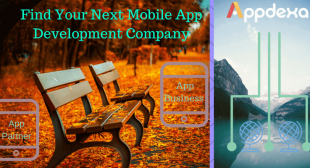 What to Look When Choosing Your Next Mobile App Development Company