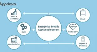 The Complete Guide to Enterprise Mobile App Development Methods and Practices