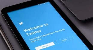 How to Use Twitter to Grow your Business