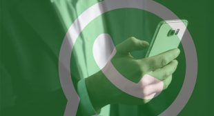 Users chat activity can be tracked in whatsapp