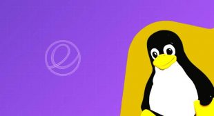 Check out here upcoming version of Linux