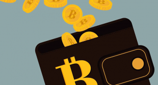Use these 7 best bitcoin wallets to store your cryptocurrency