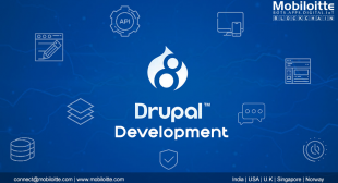 Drupal 8 development company | Mobiloitte
