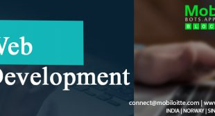 Leading Web Application Development Company