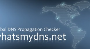 Global DNS Propagation Checker – What's My DNS?