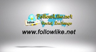 FollowLike Share It – The Social Exchange