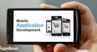 The Distinctive Elements of Mobile App Development