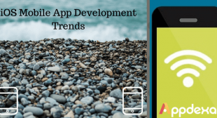 Trends to Look Out for iOS Mobile App Development