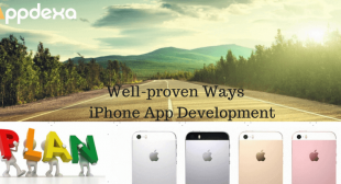 Important Elements While Doing The iPhone App Development
