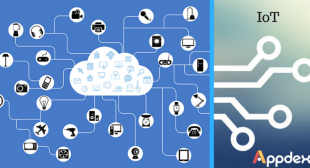 Appdexa's View On the Rise of IoT
