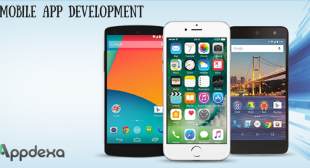 Well-Defined Guide on Mobile App Development Lifecycle