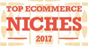 Best And Most Profitable Ecommerce Niches of 2017 | Ecomdash