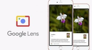 Do You Know That Google Lens Are Working On IOS Devices