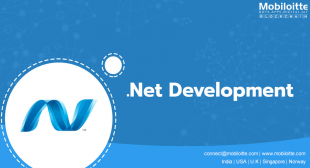 Dot Net Web Applications Development Company, ASP.Net Services