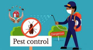 Consistently ahead to finish the Pest: Uber for Pest Control