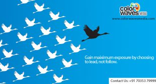 Color Waves Media-A Creative Advertising Agency in Hyderabad