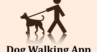 Uber For Dog Walking Service App