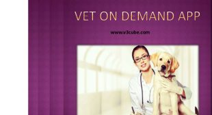 Vet On Demand App Development