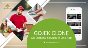 Insights to Develop a Multi-Service App Like Gojek