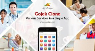 Everything you need to know about Gojek clone