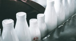 Enjoy the healthy milk delivery service with milk delivery app