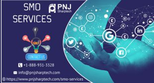 Get Social Media Optimization (SMO) Services by PNJ Sharptech