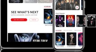 Netflix Clone App Development