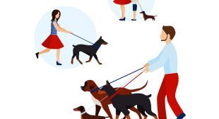 Uber for Dog Walking App Development– Pros and Cons