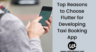 Top Reasons to Choose Flutter for Developing Taxi Booking App