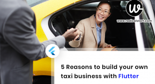 5 reasons to build your own taxi business with flutter