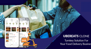 Efficient business plan and major attributes of an UberEats clone app