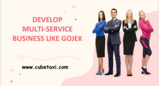 DEVELOP MULTI-SERVICE BUSINESS LIKE GOJEK