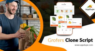 Witness growth with your Grofers clone by adopting the robust business model