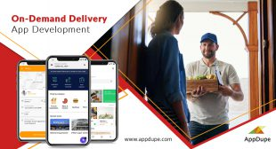 On-demand delivery services app: A consolidated platform for our necessities