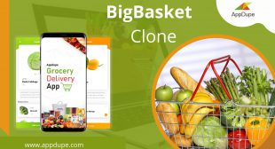 Bigbasket app: A detailed view of its business model