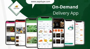 What are the services offered by Quiqup Clone App?