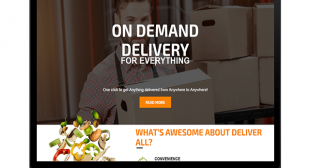 Strategies Utilized by a Successful On Demand Delivery Marketplace