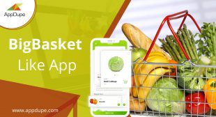 Major Grocery delivery types that can be used for Bigbasket clone