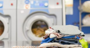 Readymade Uber for laundry service app for quick launch