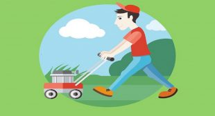 Prerequisites of a Powerful On Demand Lawn Care App