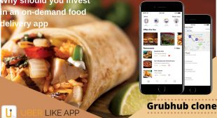 How will a Grubhub clone help with your business?