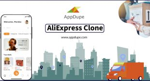 Captivate the audience with a top-notch AliExpress clone