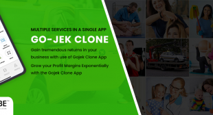 Grow your Profit Margins Exponentially with the Gojek Clone App
