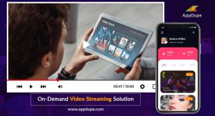 Launch Your Own Video Streaming App With us