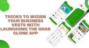 Tricks to widen your business vests with launching the Grab clone app