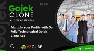 Multiply Your Profits With Our Fully Technological Gojek Clone App