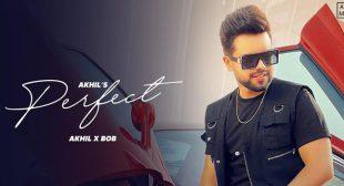 Perfect Lyrics – Akhil