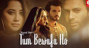 Tum Bewafa Ho Lyrics – Payal Dev