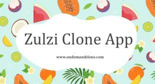 Zulzi Clone App