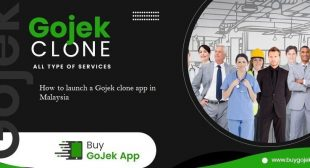 How to launch a Gojek clone app in Malaysia